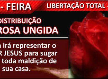 REUNIÃO DA LIBERTAÇÃO NA SEXTA FEIRA